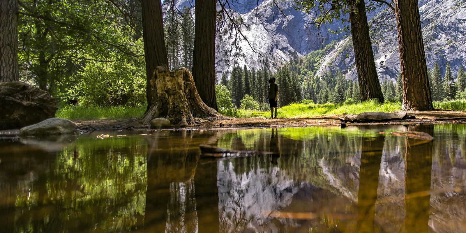 Man near a creek in Yosemite CA on a sunny day royalty free stock image