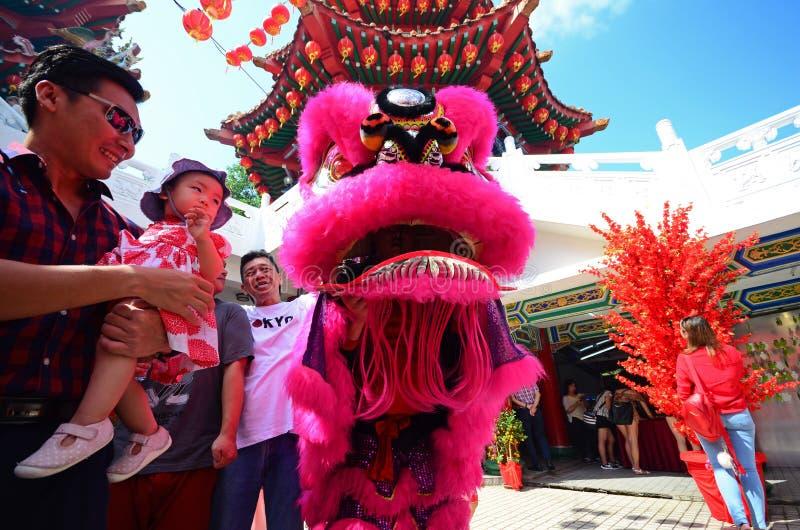 Man och barn på lejondansaren under kinesiskt nytt år arkivfoton