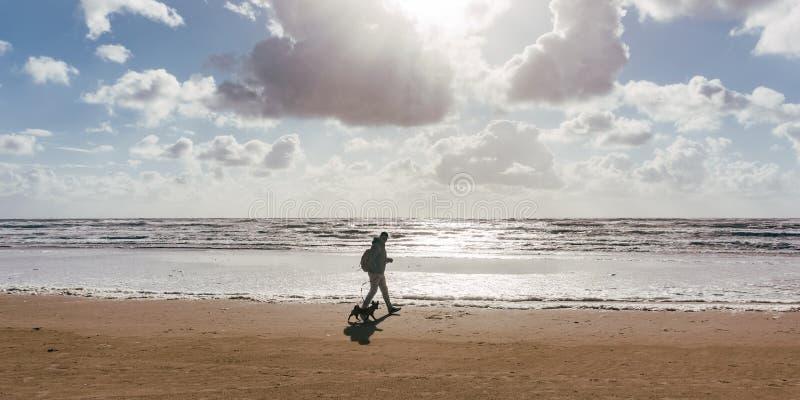 Man och hans hund som går på stranden på solnedgången eller soluppgång royaltyfri bild