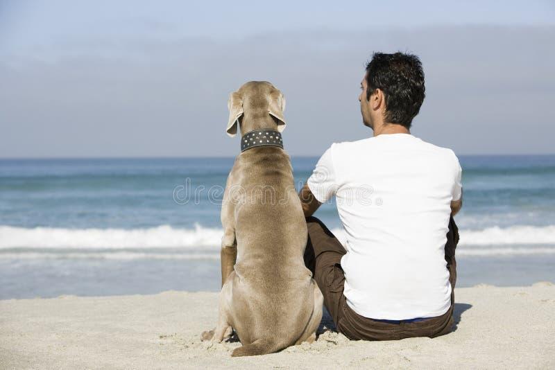 Man- och hundsammanträde på stranden royaltyfria bilder