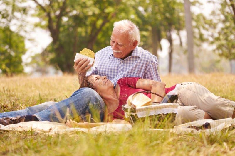 Man och kvinna för gamla par som hög gör picknicken arkivbilder