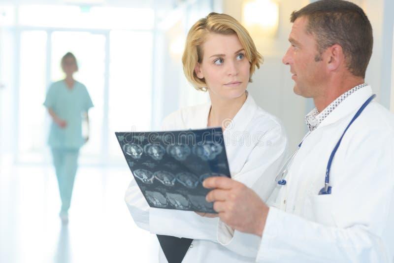 Man- och kvinnligdoktorer som undersöker bröstkorgröntgenstrålen i sjukhus fotografering för bildbyråer