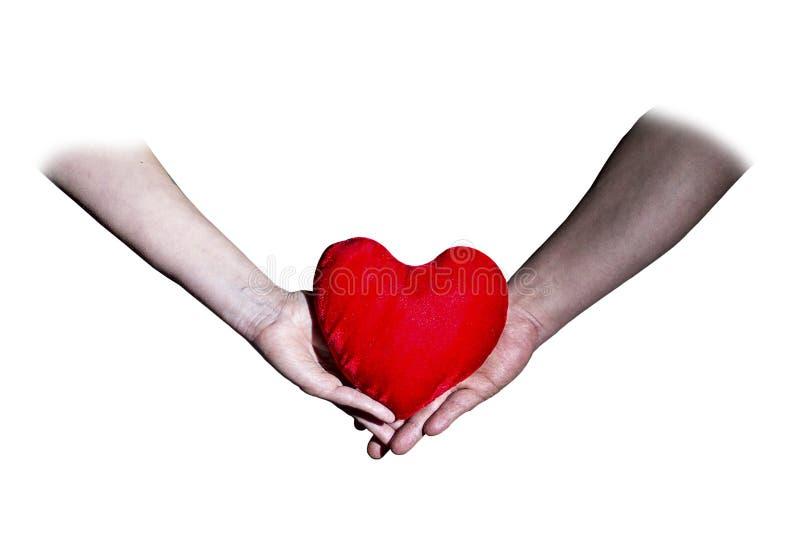 Man- och kvinnlighänder som rymmer dag för hjärtavalentin` s royaltyfri bild