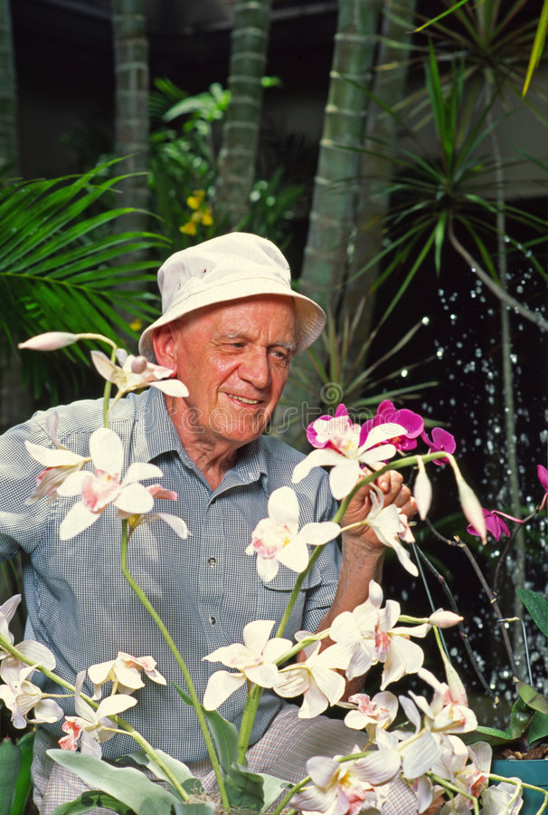 Man with Orchids royalty free stock photo