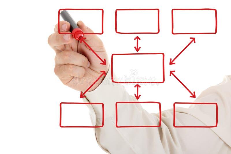 Man And Organization Chart On A White Board Stock Photo