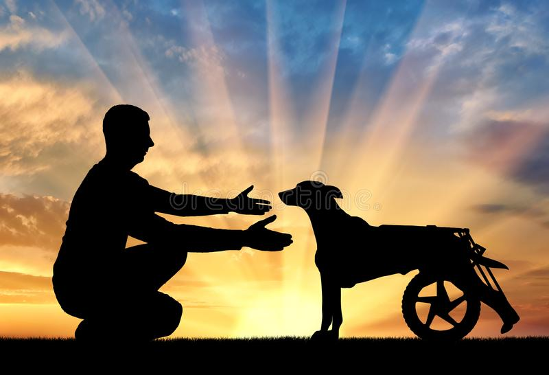 Man outdoors on a hill, calls for a paralyzed dog in a wheelchair royalty free stock photos