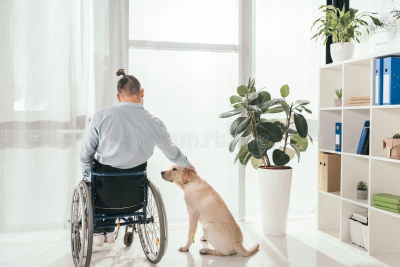 Man på rullstolen som daltar hans hund arkivfoto
