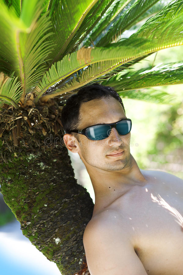Download Man on palm stock image. Image of scenic, people, blue - 25522961