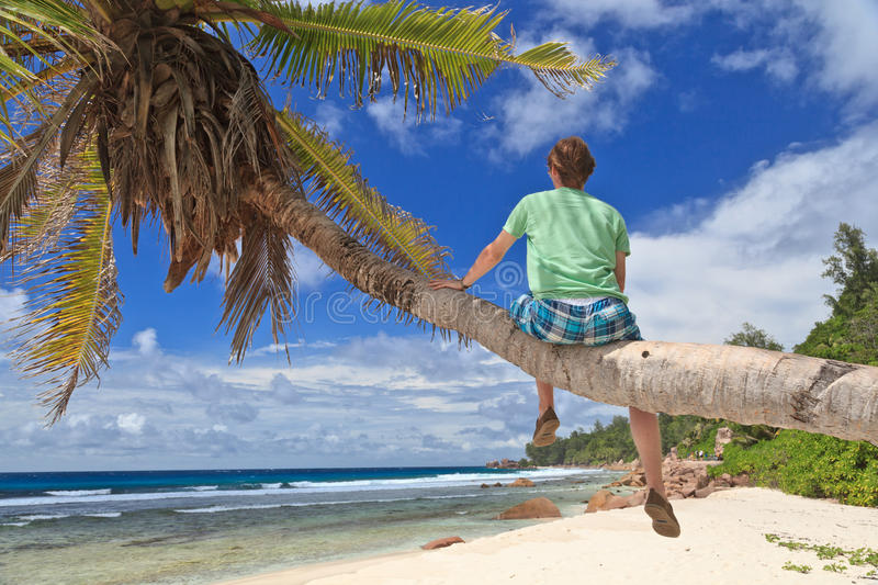 Download Man On Palm In Tropical Beach Stock Photo - Image: 25724654