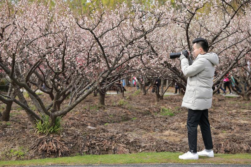 Asian chinese man photographer in nature royalty free stock image