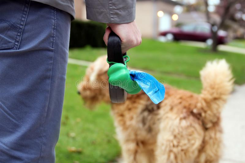 Man Picking up / cleaning up dog droppings. Man Picking up / cleaning up dog droppings stock photography