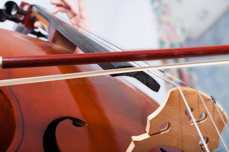 Man Playing Cello Stock Images - Download 1,881 Royalty Free Photos