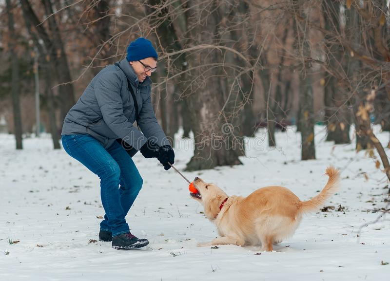 Man playing with dog golden retriever outdoors stock image