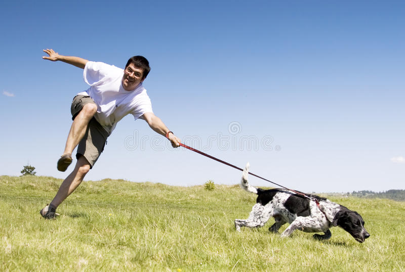 Download Man playing with his dog stock photo. Image of friend - 12239762
