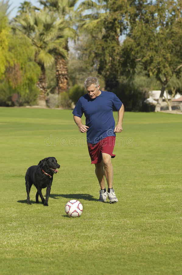 Man Playing Soccer With Dog at Park royalty free stock photo