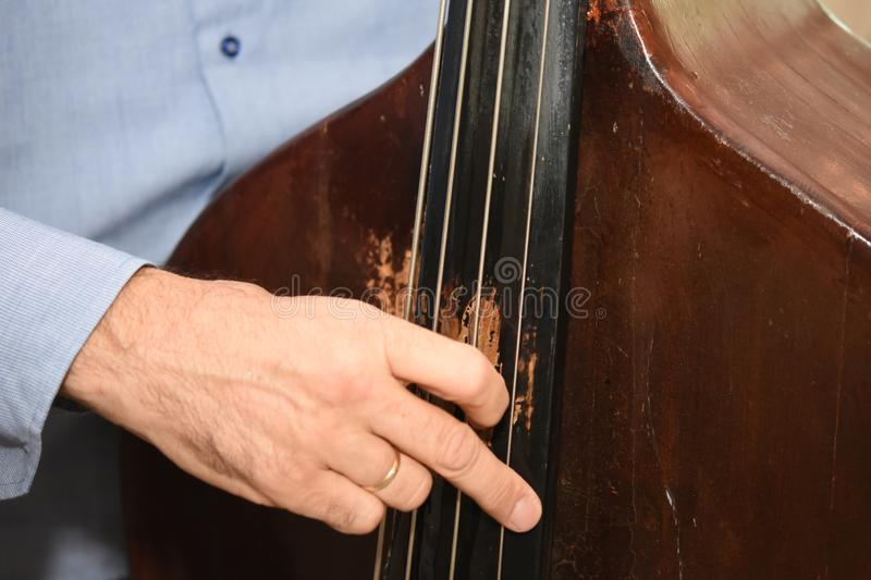 The man plays the double bass. fingers on the double bass royalty free stock images