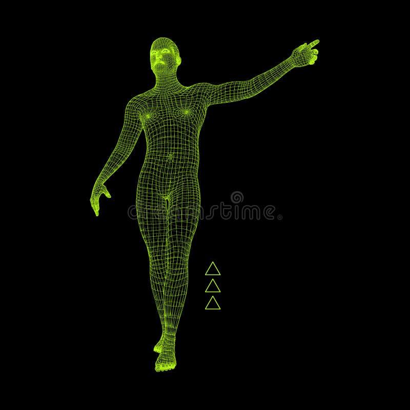 Man Pointing his Finger. 3D Model of Man. Geometric Design. Vector Illustration. 3d Polygonal Covering Skin. Human Polygon Body. stock illustration