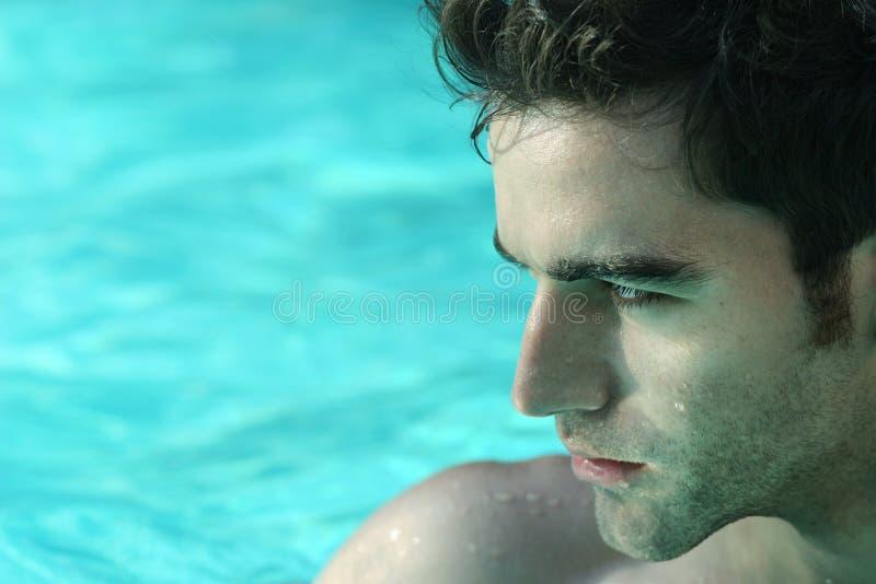 Man in pool royalty free stock image