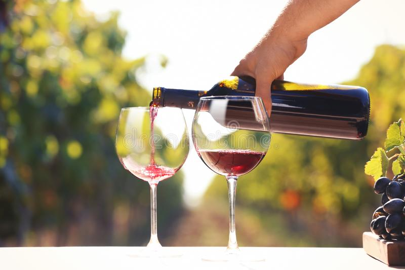Man pouring red wine into glass. On table outdoors royalty free stock photo