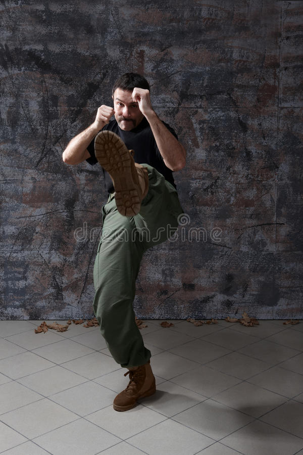 Download Man practice martial arts stock image. Image of portrait - 9718555