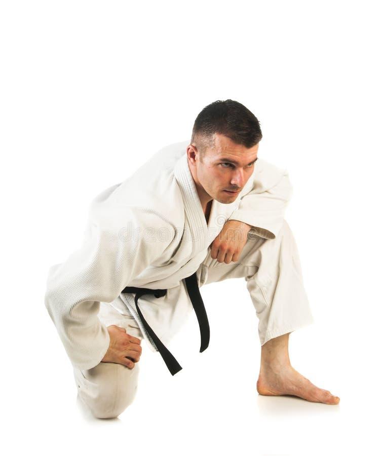 Man practicing Brazilian jiu-jitsu (BJJ). Young man practicing Brazilian jiu-jitsu (BJJ) isolated on white background royalty free stock image