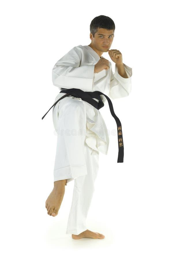 Man practicing karate royalty free stock images