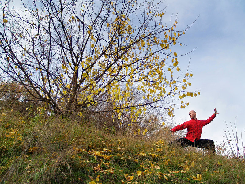 Download Man practises tai chi stock photo. Image of exercise, arts - 6227888
