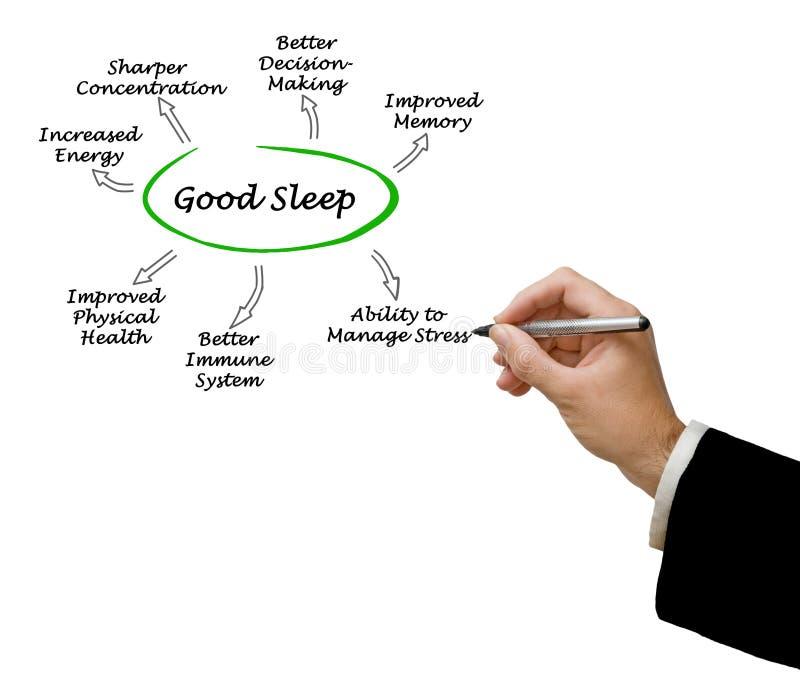 Good Sleep royalty free stock photo