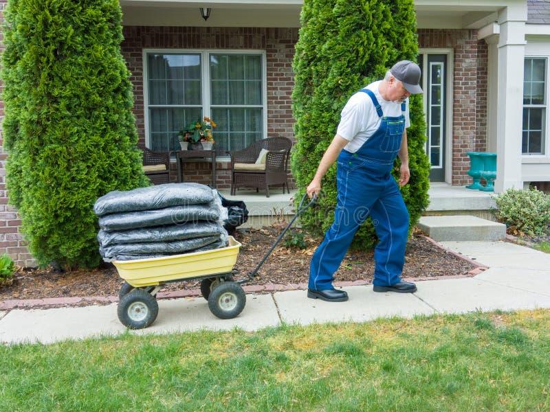 Man pulling a heavy wheelbarrow loaded with mulch stock photography