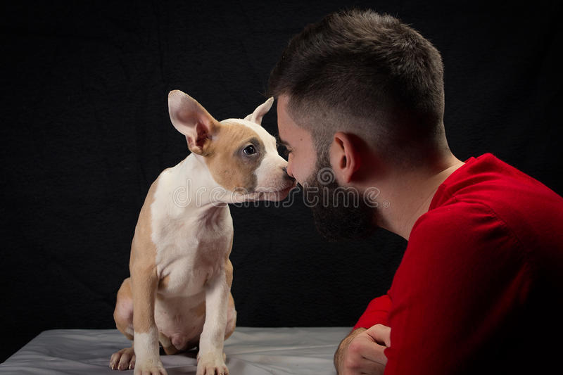 Man with puppy royalty free stock photography