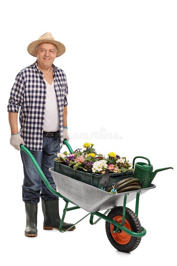 Free Man Pushing A Wheelbarrow With Flowers Royalty Free Stock Image - 70078506