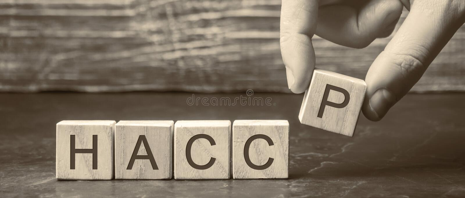 A man puts wooden blocks with the word HACCP. Hazard analysis and critical control points. Quality management rules for food. Industry. Food safety from royalty free stock photo