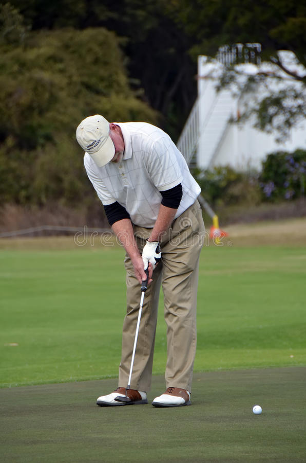 Man putting on golf greens royalty free stock photo