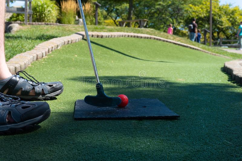 Man putting on a mini golf course green royalty free stock images