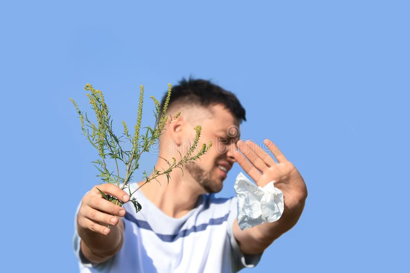 Man with ragweed branch suffering from allergy, focus on hands stock image