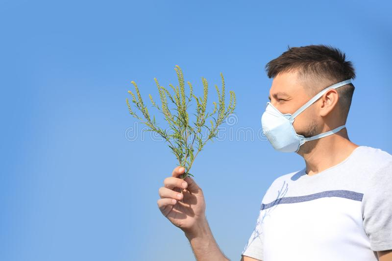 Man with ragweed branch suffering from allergy outdoors stock image