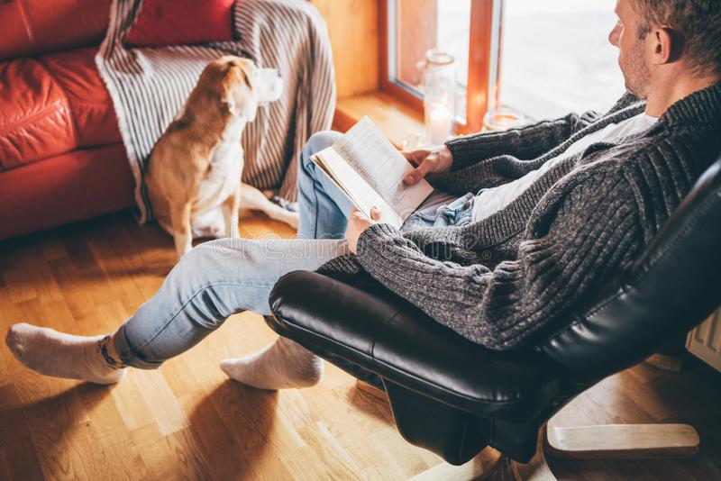Man reading book on the cozy couch to his beagle dog in cozy home atmosphere. Peaceful moments of cozy home concept image royalty free stock image