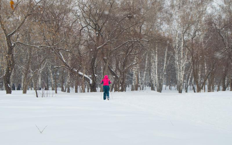 Man in red jacket cross country skiing in winter Park, the view from the back royalty free stock image