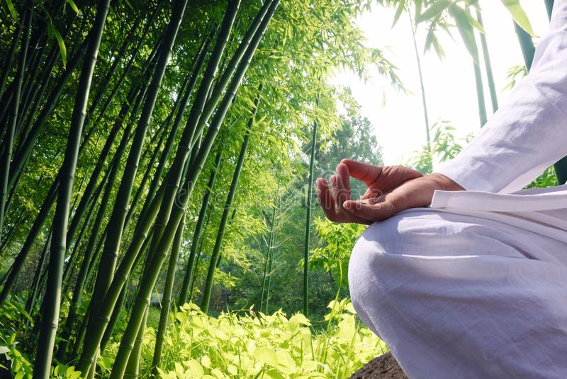 Man relaxing by bamboo forest royalty free stock photos