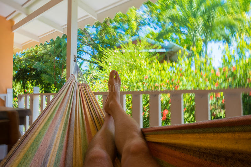 Man relaxing in the hammock royalty free stock image