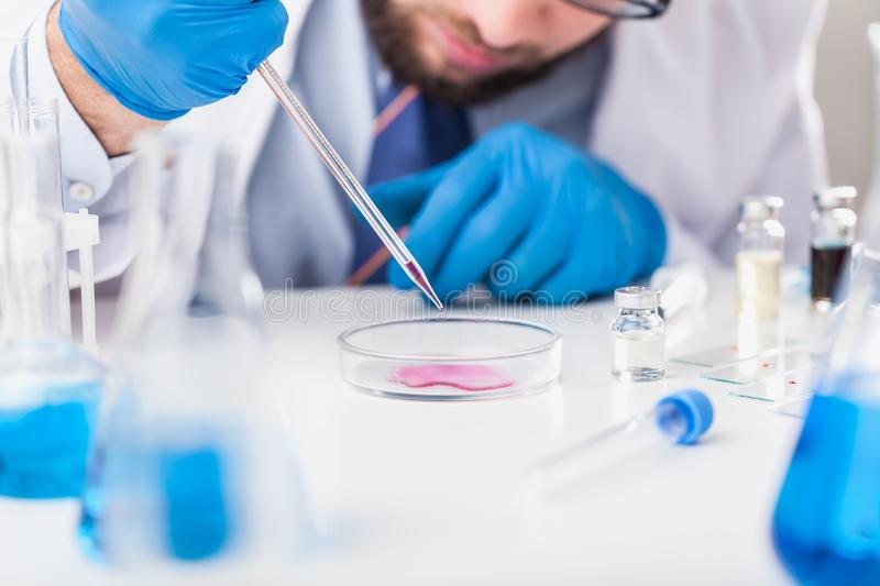 Man researcher carrying out scientific research royalty free stock photography
