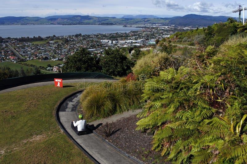 Man ride on Skyline Rotorua Luge royalty free stock photo