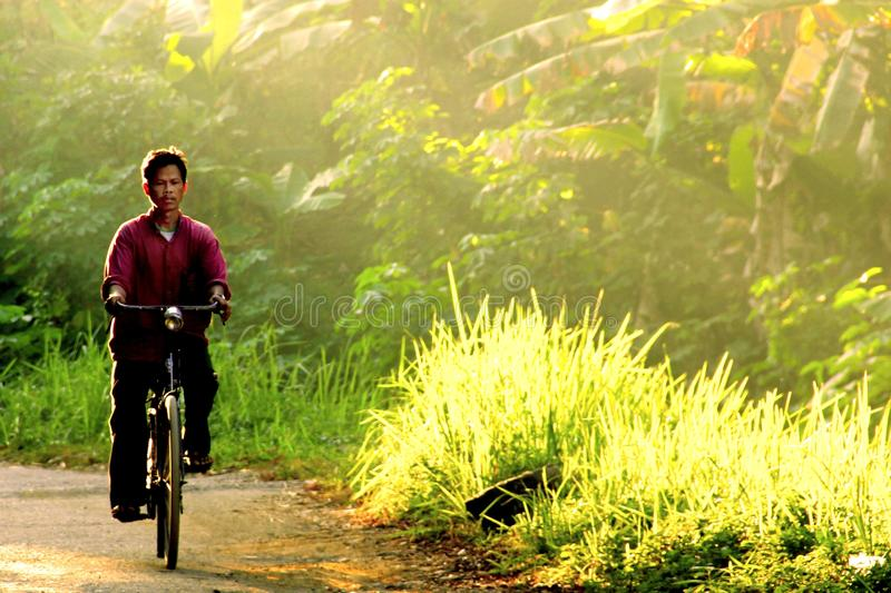 Man rides bike in the morning through the ray of light stock image