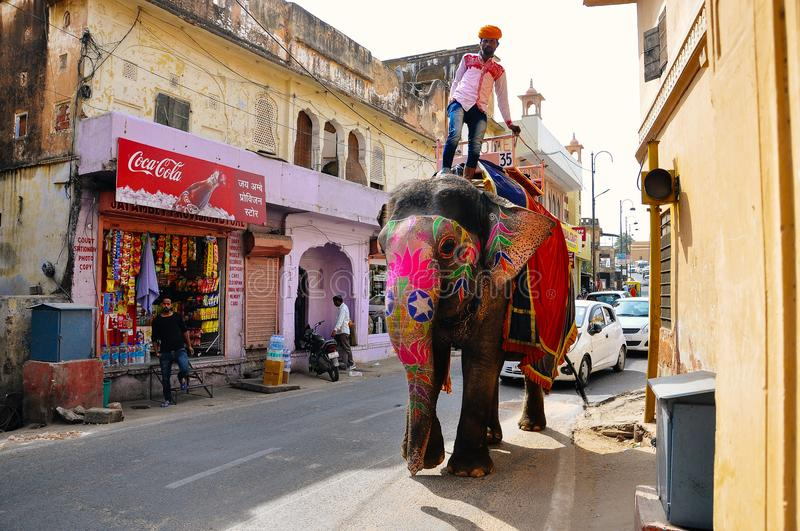 A man rides his elephant in Jaipur, India. stock image