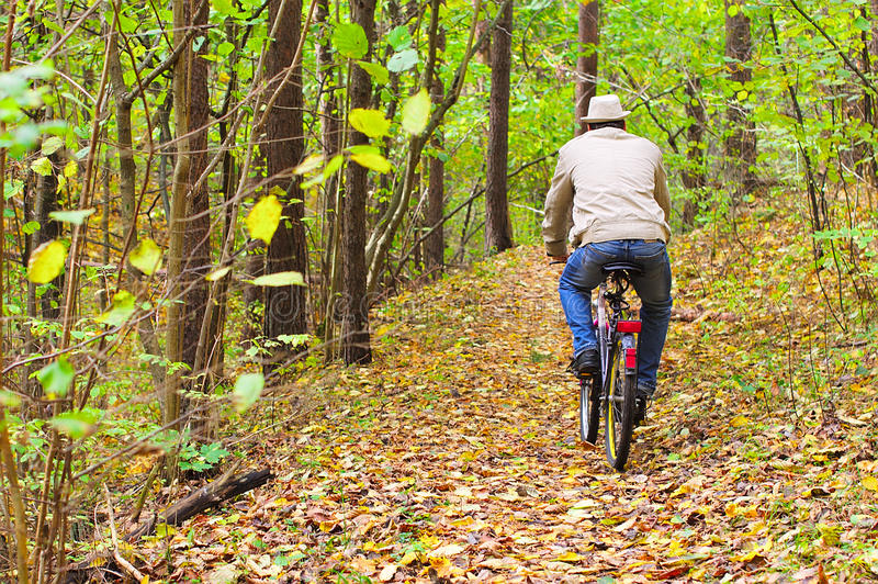 Download Man Is Riding A Bike In Autumn Forest Stock Photo - Image: 21535996