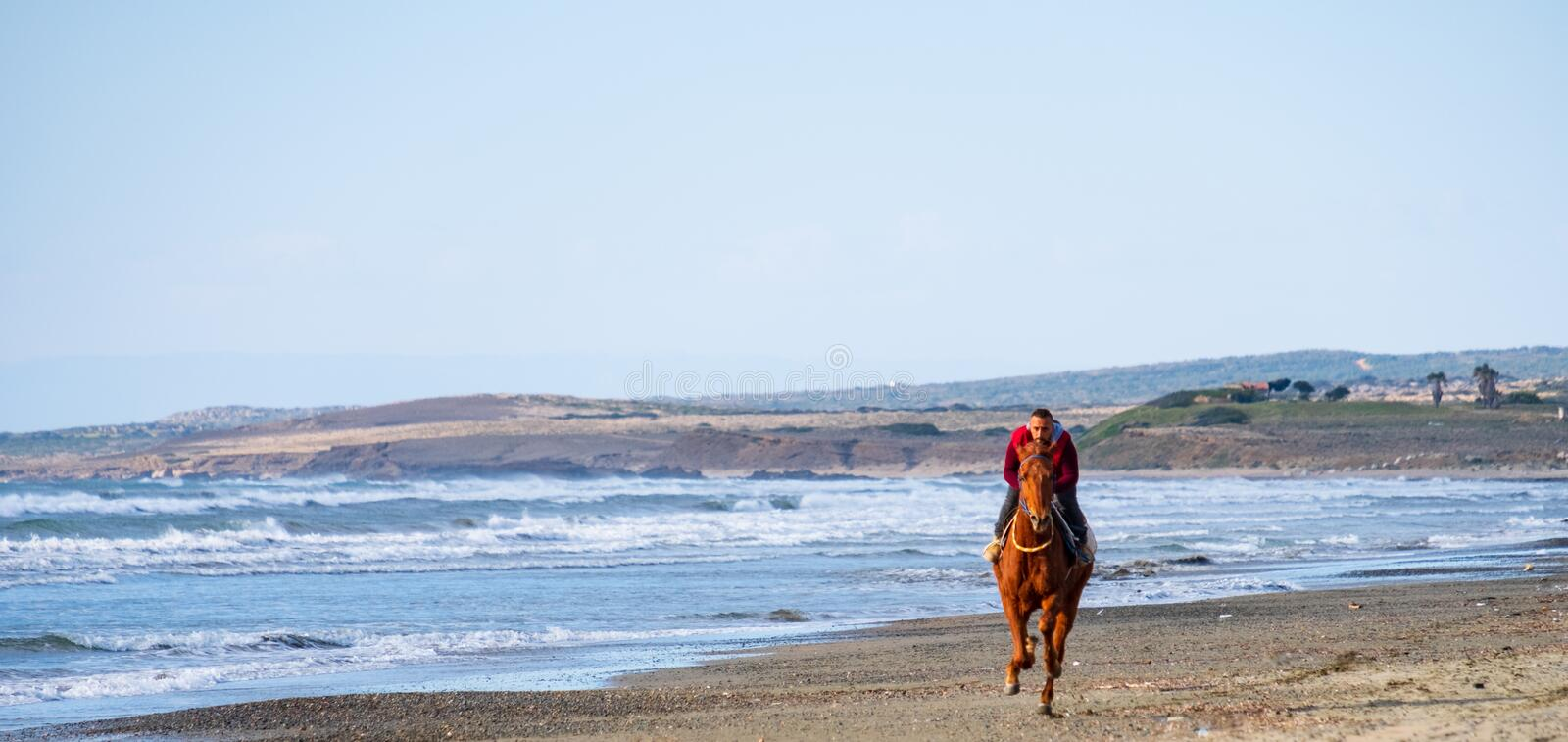 Man riding on a brown galloping horse on Ayia Erini beach in Cyprus against a rough sea royalty free stock photos