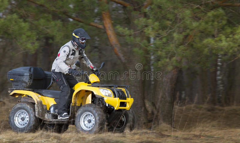 Man riding dirty 4x4 ATV quad bike. Horizontal motion portrait of a man in safety helmet and goggles driving mud-covered yellow ATV 4x4 quad bike in gray sport royalty free stock photo