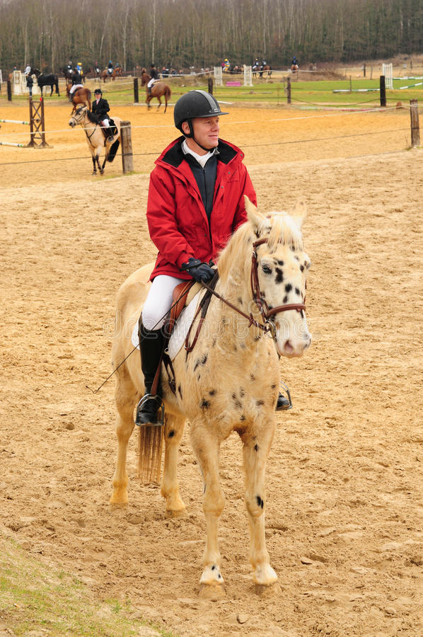 Download Man on the horse editorial image. Image of pants, riding - 30091710