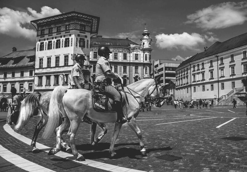 2 Man Riding a Horse in Gray Scale Photography royalty free stock images