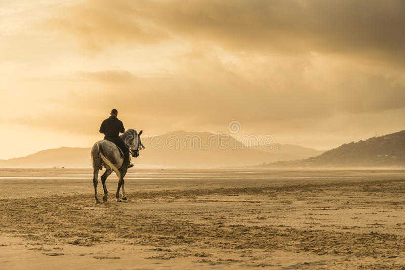Man riding horse stock image